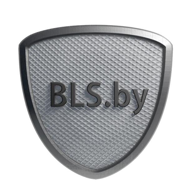 bls-logo-2